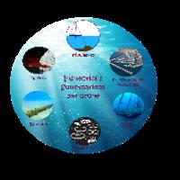 Inspection sous marine par drone
